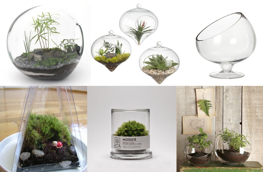 inspiration d co terrarium dans la cabine. Black Bedroom Furniture Sets. Home Design Ideas
