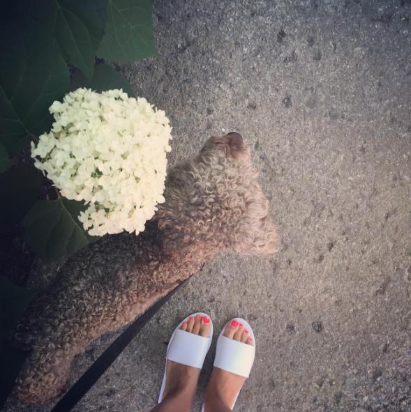 sandales wal-mart 9,97$