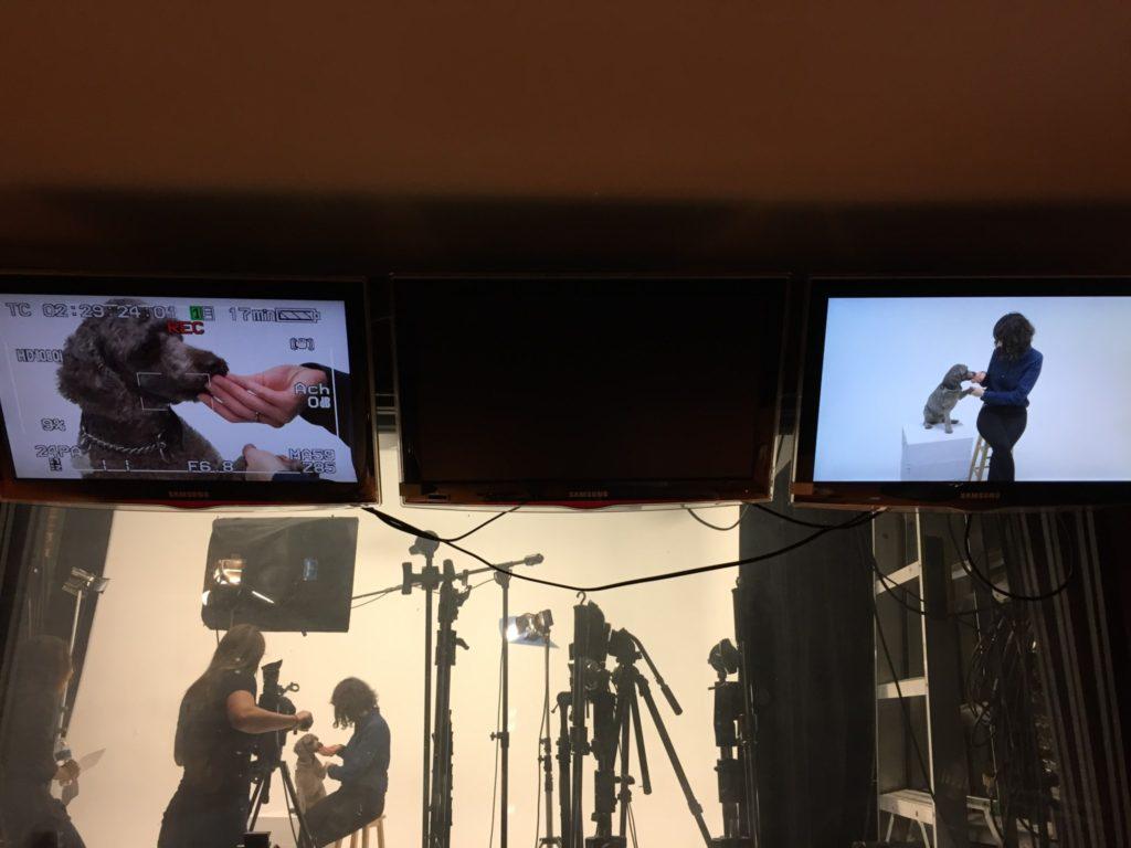 En tournage avec Willie